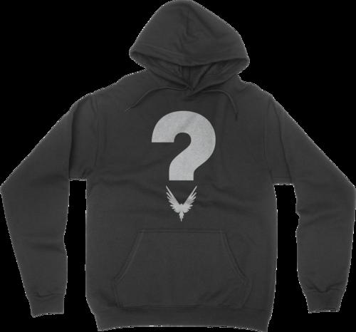Mystery Hoodie